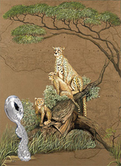 Mother Africa-Cheetahs wth