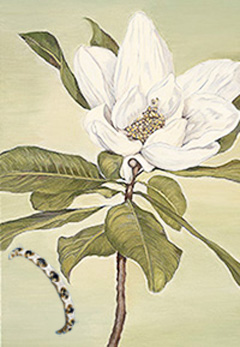 Magnolia, canvas art print, with gold vermeil Bracelet with pave CZs and Faux sapphires
