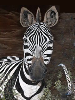 Zebra, Giclee Print on Canvas, with Pewter Herringbone Bracelet