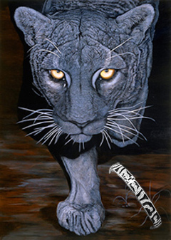 On the Prowl-Black Panther, fine Art Print, with CZ and Black Enamel Bracelet