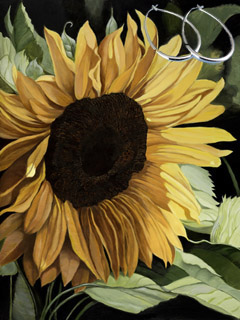 Sunflower, fine art print on canvas with Sterling Silver 1 1/2 inch Hoop Earrings