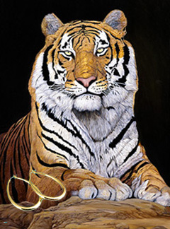 Watchful-Tiger Fine Art Print on Canvas with the Bonded 18K Gold Tubular Teardrop Hoop Earrings