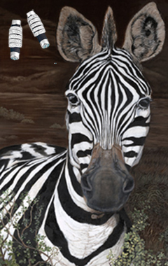 Up Close and Personal-Zebra