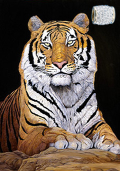 Watchful-Tiger, fine art print, with Gold Vermeil Barrel Slide Pendant studded with CZs