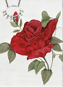 Red Rose II, fine art print